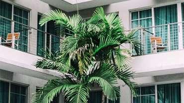 Jasa Renovasi Kantor dan Gedung di Solo Property